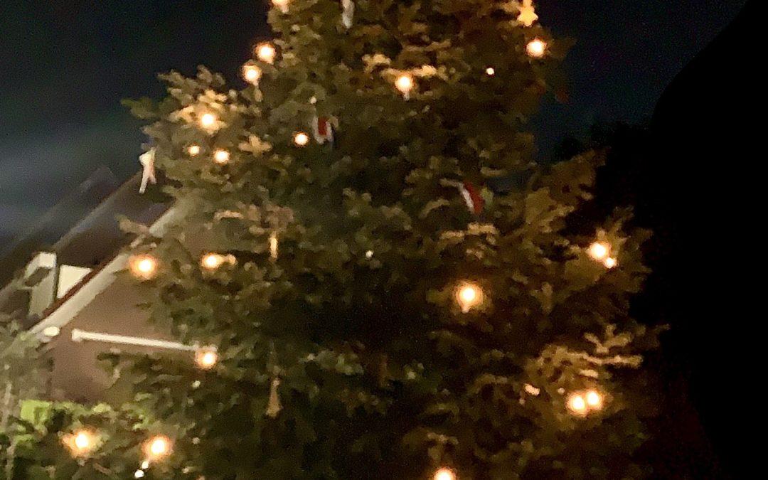Unser Weihnachtsbaum steht …